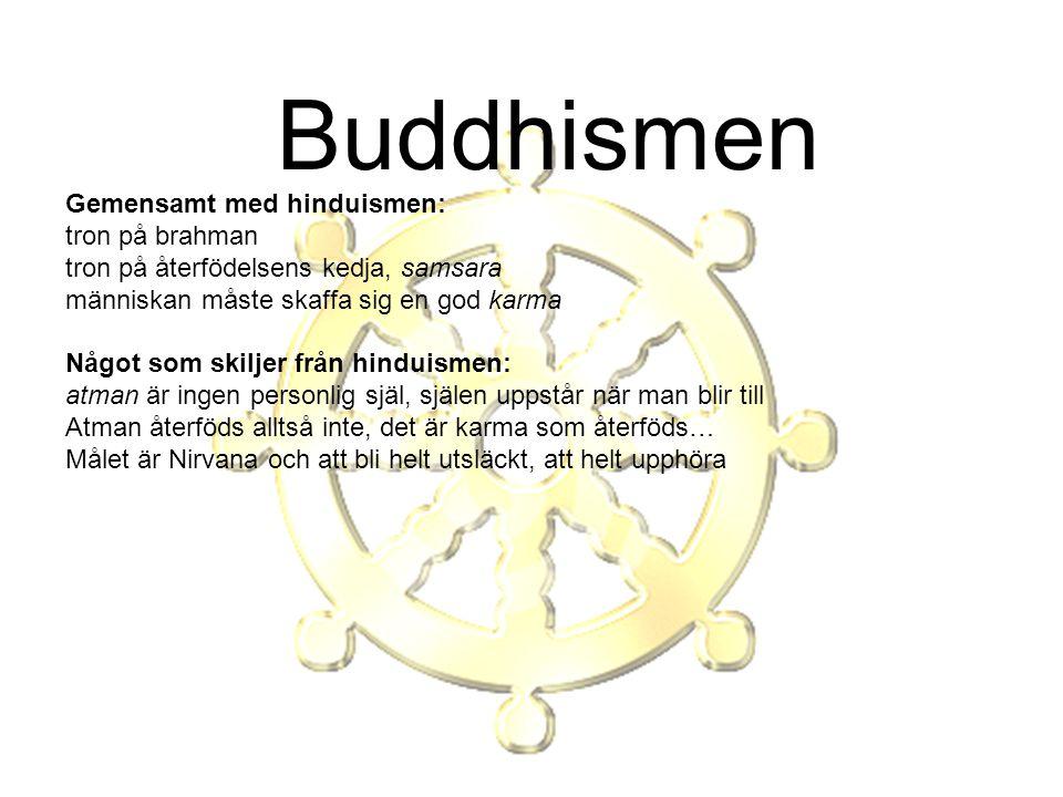 Buddhismen Gemensamt med hinduismen: tron på brahman tron på återfödelsens kedja, samsara människan måste skaffa sig en god karma Något som skiljer fr