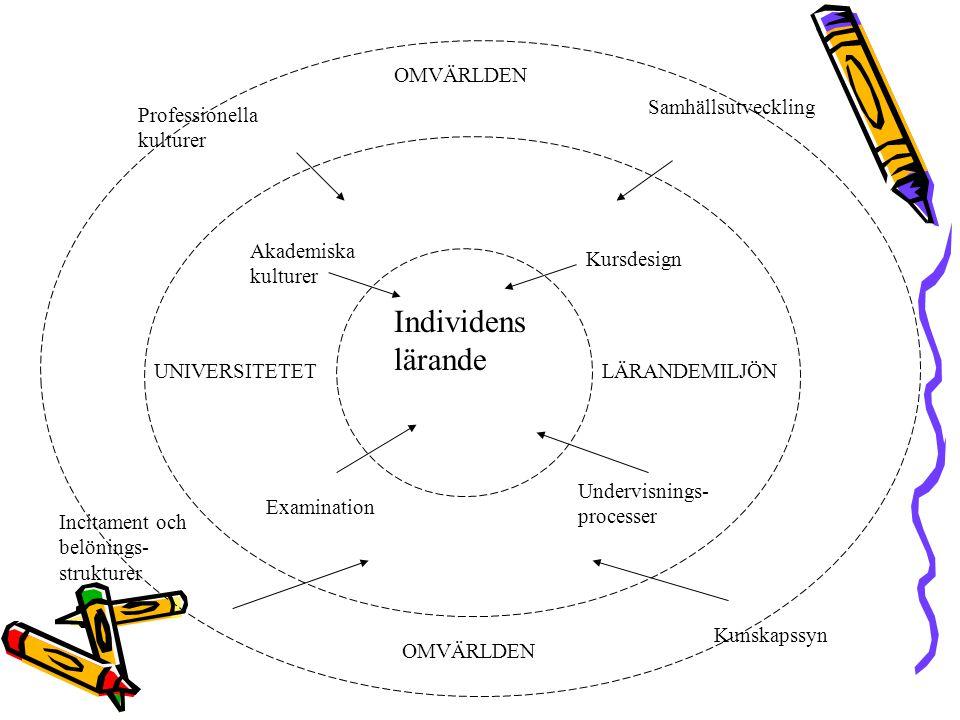 Individens lärande UNIVERSITETETLÄRANDEMILJÖN Akademiska kulturer Kursdesign Undervisnings- processer Examination OMVÄRLDEN Incitament och belönings- strukturer Samhällsutveckling Kunskapssyn Professionella kulturer