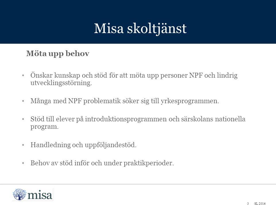 Misa skoltjänst 3SL 2014 Möta upp behov Önskar kunskap och stöd för att möta upp personer NPF och lindrig utvecklingsstörning.