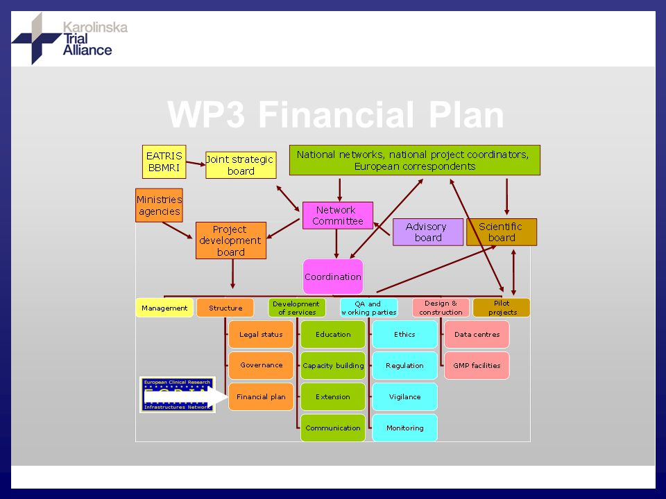 WP3 Financial Plan