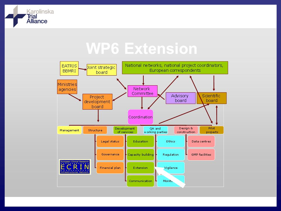 WP6 Extension