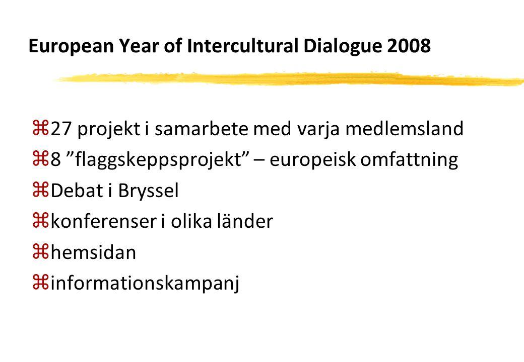 """European Year of Intercultural Dialogue 2008 z27 projekt i samarbete med varja medlemsland z8 """"flaggskeppsprojekt"""" – europeisk omfattning zDebat i Bry"""