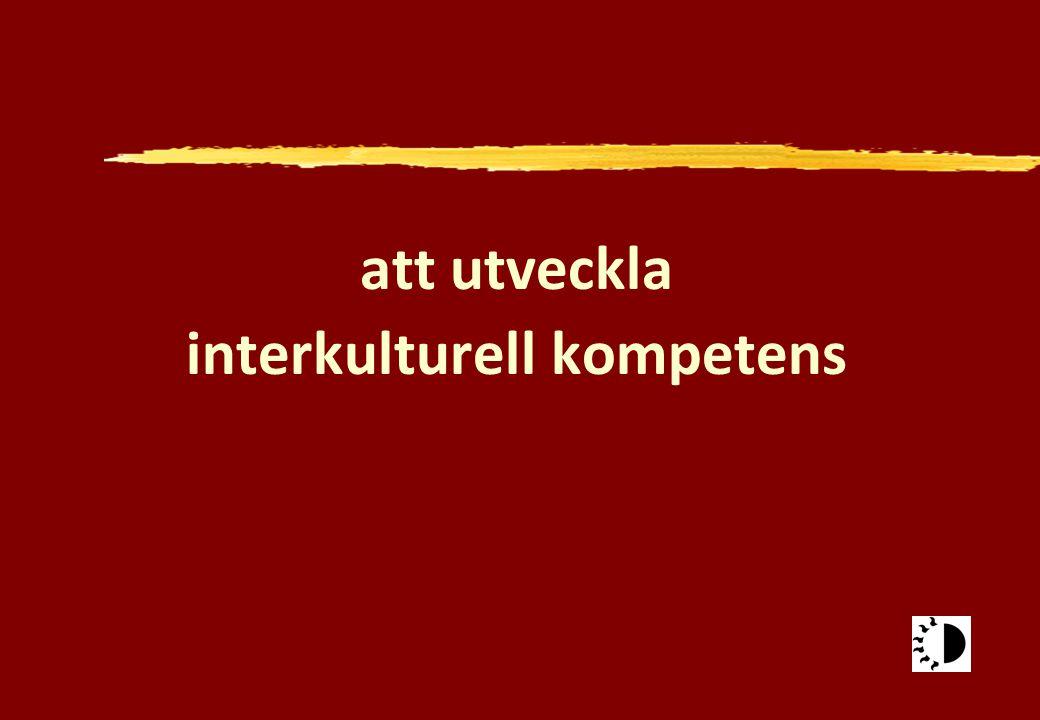 att utveckla interkulturell kompetens