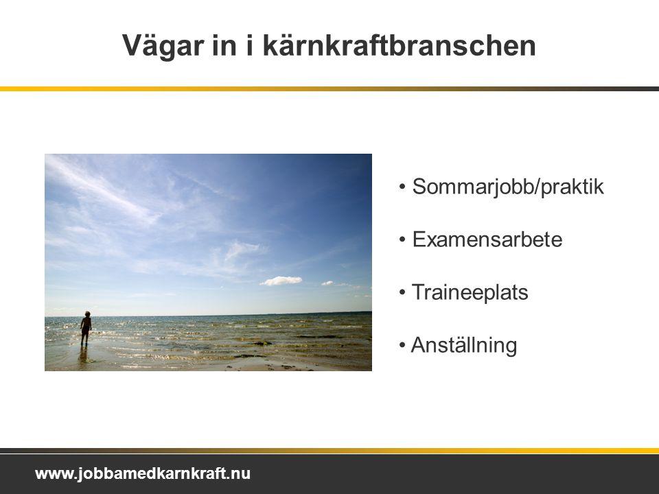 www.jobbamedkarnkraft.nu Vägar in i kärnkraftbranschen Sommarjobb/praktik Examensarbete Traineeplats Anställning