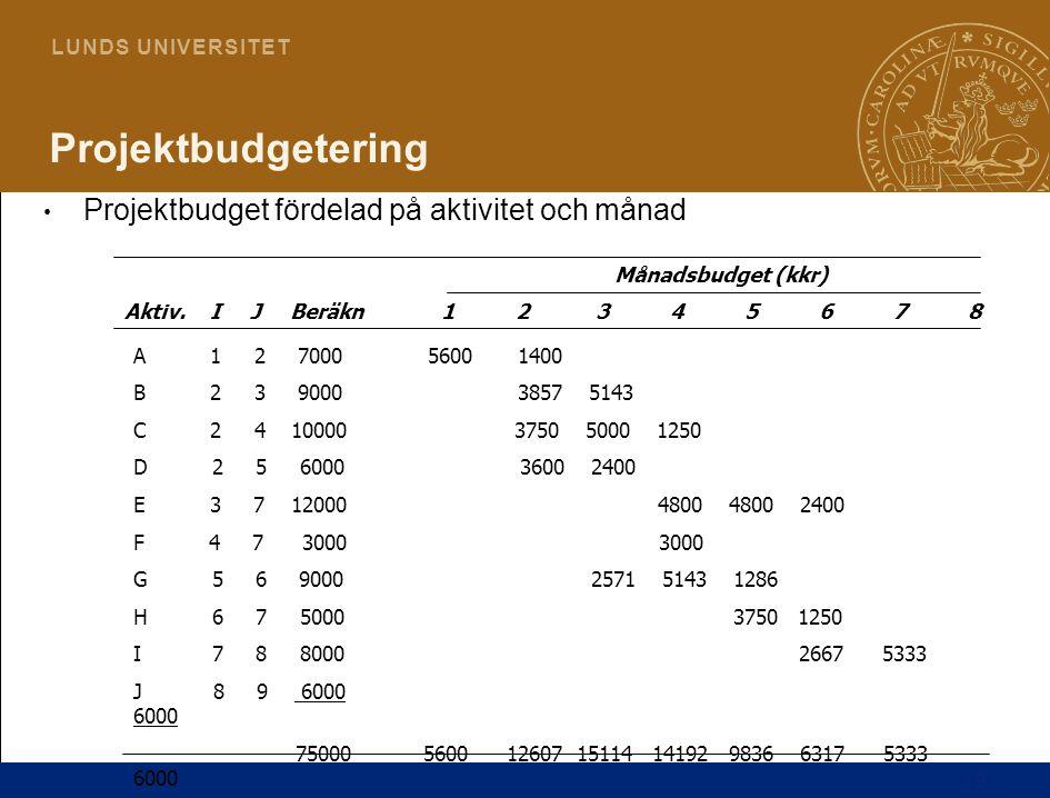19 L U N D S U N I V E R S I T E T Projektbudgetering Projektbudget fördelad på aktivitet och månad Aktiv. I J Beräkn1 2 3 4 5 6 7 8 Månadsbudget (kkr