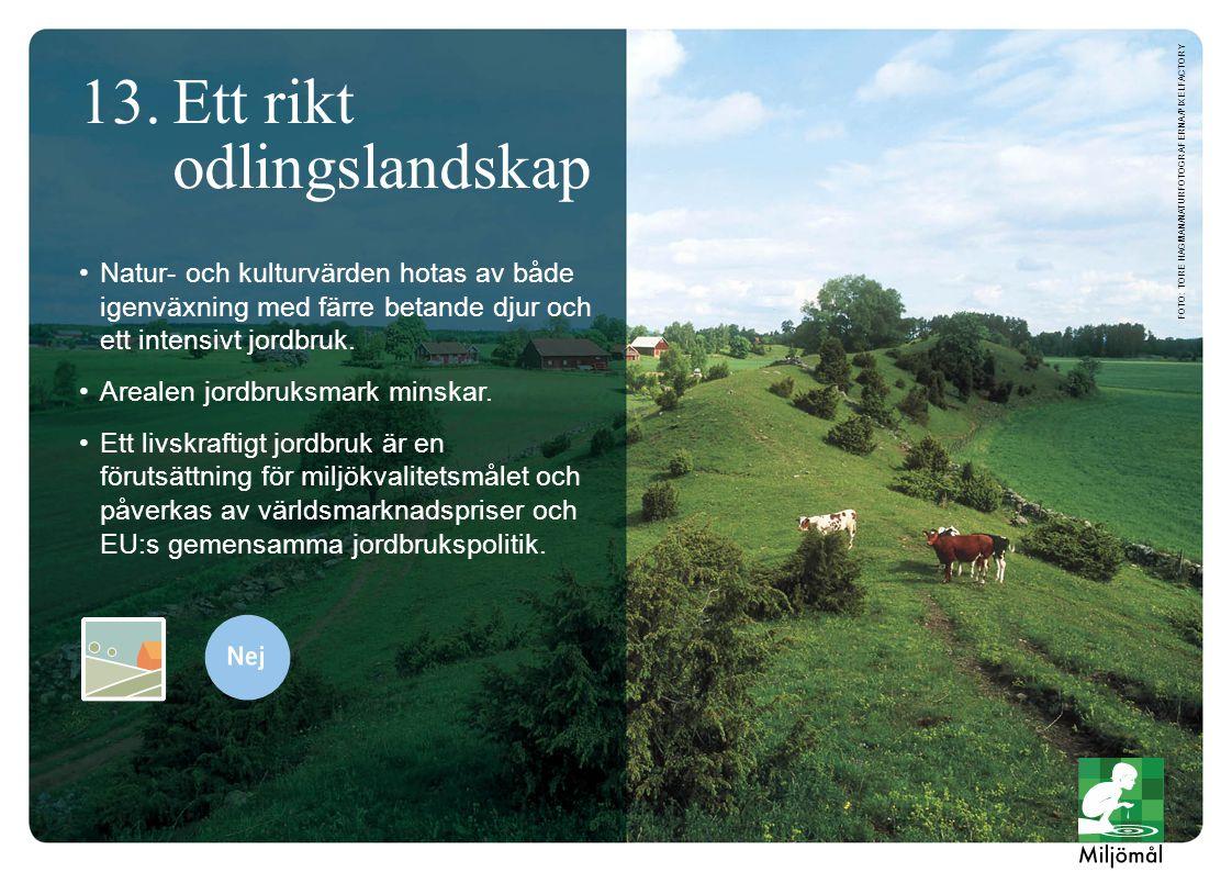 Natur- och kulturvärden hotas av både igenväxning med färre betande djur och ett intensivt jordbruk. Arealen jordbruksmark minskar. Ett livskraftigt j