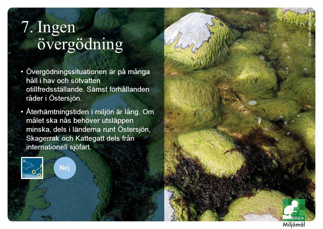 Övergödningssituationen är på många håll i hav och sötvatten otillfredsställande. Sämst förhållanden råder i Östersjön. Återhämtningstiden i miljön är
