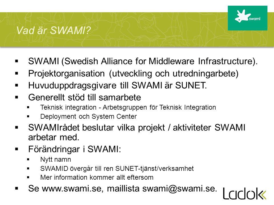  SWAMI (Swedish Alliance for Middleware Infrastructure).  Projektorganisation (utveckling och utredningarbete)  Huvuduppdragsgivare till SWAMI är S