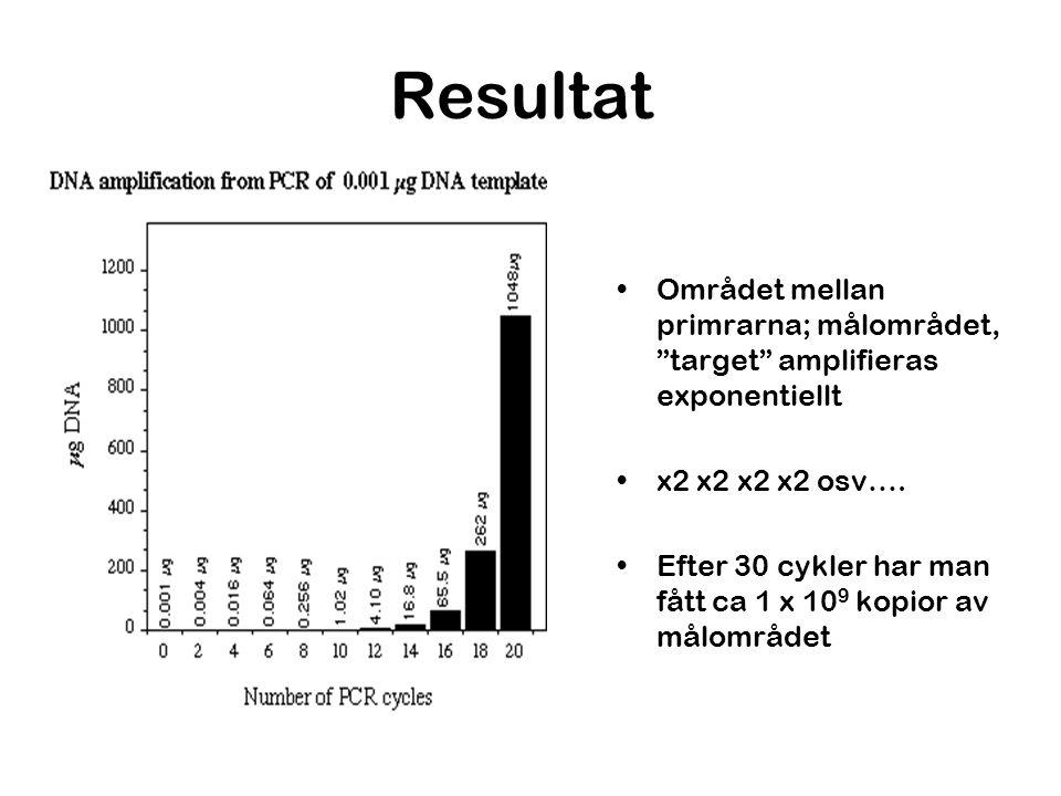 """Resultat Området mellan primrarna; målområdet, """"target"""" amplifieras exponentiellt x2 x2 x2 x2 osv…. Efter 30 cykler har man fått ca 1 x 10 9 kopior av"""