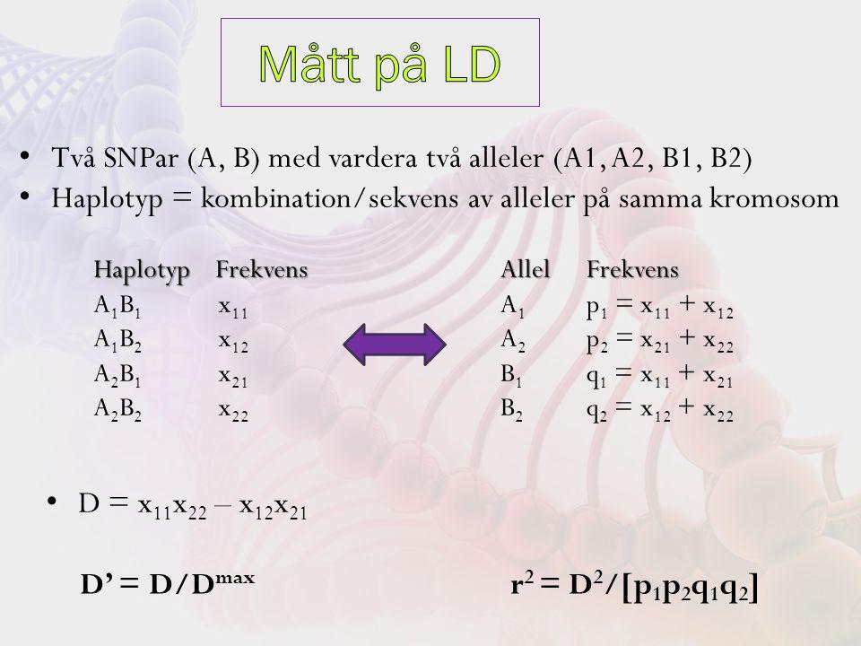 Två SNPar (A, B) med vardera två alleler (A1, A2, B1, B2) Haplotyp = kombination/sekvens av alleler på samma kromosom Haplotyp Frekvens A 1 B 1 x 11 A 1 B 2 x 12 A 2 B 1 x 21 A 2 B 2 x 22 Allel Frekvens A 1 p 1 = x 11 + x 12 A 2 p 2 = x 21 + x 22 B 1 q 1 = x 11 + x 21 B 2 q 2 = x 12 + x 22 D = x 11 x 22 – x 12 x 21 D' = D/D max r 2 = D 2 /[p 1 p 2 q 1 q 2 ]