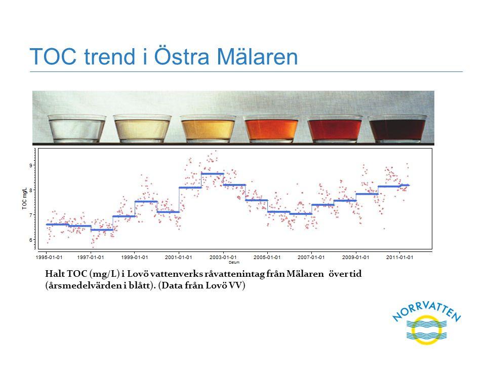 TOC trend i Östra Mälaren Halt TOC (mg/L) i Lovö vattenverks råvattenintag från Mälaren över tid (årsmedelvärden i blått). (Data från Lovö VV)
