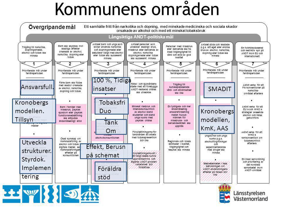 Community Readiness Model (CRM) De nio nivåerna: 9.