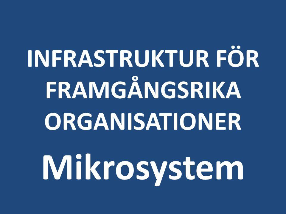 INFRASTRUKTUR FÖR FRAMGÅNGSRIKA ORGANISATIONER Mikrosystem