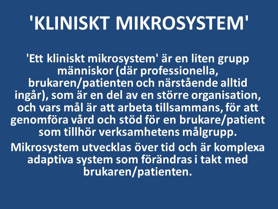 'Ett kliniskt mikrosystem' är en liten grupp människor (där professionella, brukaren/patienten och närstående alltid ingår), som är en del av en störr