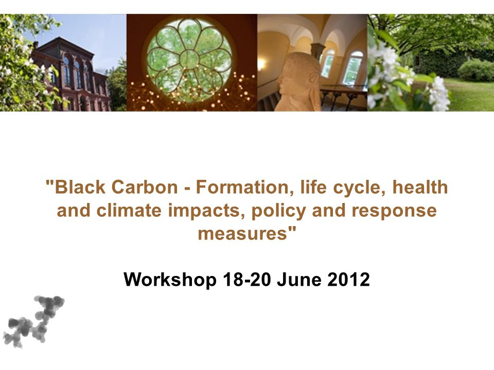 Black Carbon - Formation, life cycle, health and climate impacts, policy and response measures Workshop 18-20 June 2012