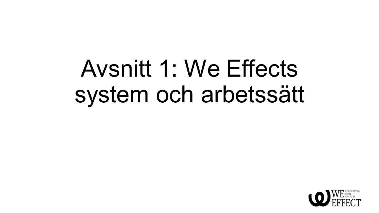 Avsnitt 1: We Effects system och arbetssätt