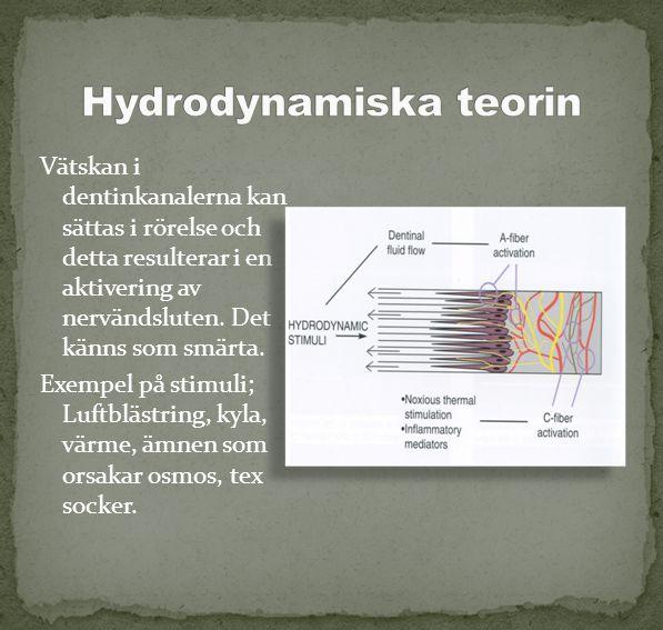 Vätskan i dentinkanalerna kan sättas i rörelse och detta resulterar i en aktivering av nervändsluten. Det känns som smärta. Exempel på stimuli; Luftbl