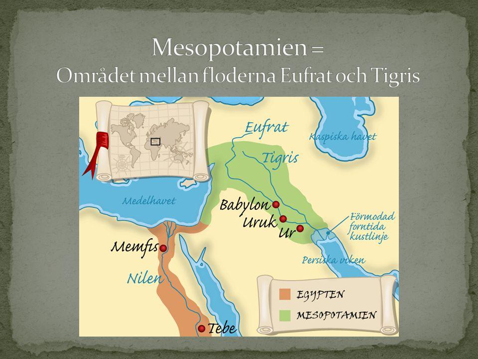 Den sumeriska högkulturen uppstod omkring 5000 år sedan.