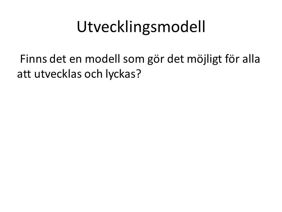 Utvecklingsmodell Finns det en modell som gör det möjligt för alla att utvecklas och lyckas?