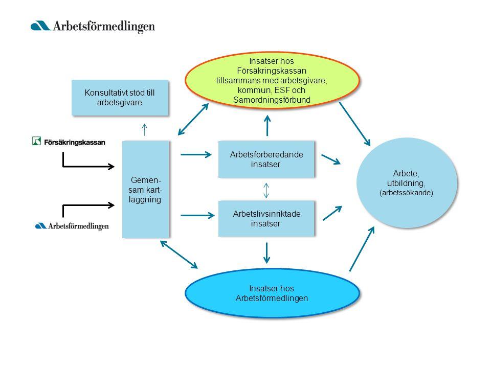 Gemen- sam kart- läggning Arbetsförberedande insatser Arbetslivsinriktade insatser Arbete, utbildning, (arbetssökande) Konsultativt stöd till arbetsgivare Insatser hos Försäkringskassan tillsammans med arbetsgivare, kommun, ESF och Samordningsförbund Insatser hos Arbetsförmedlingen