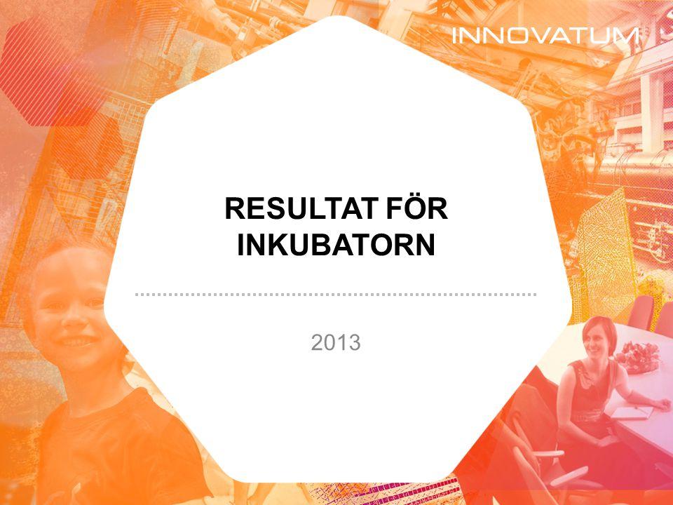 Antal anställda i IBO* (16 AB) 31 december 2013 * IBO = Incubator Business Object 272