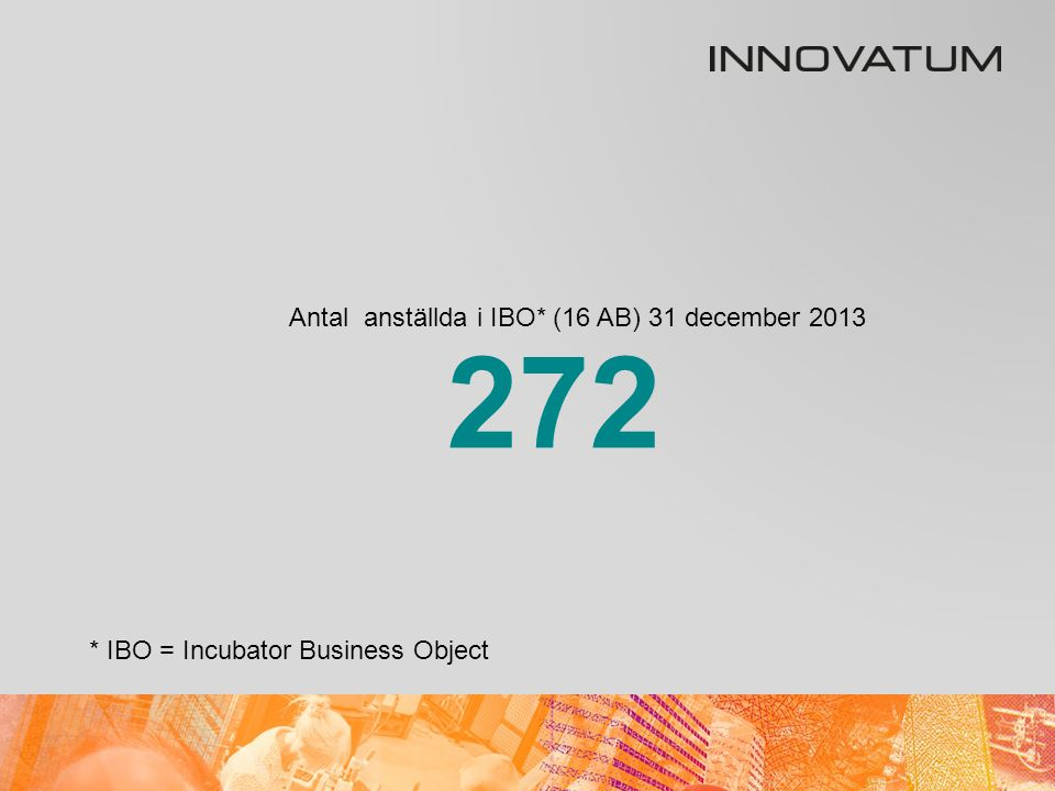 Antal anställda i IBO* (16 AB) 31 december 2013 * IBO = Incubator Business Object 272