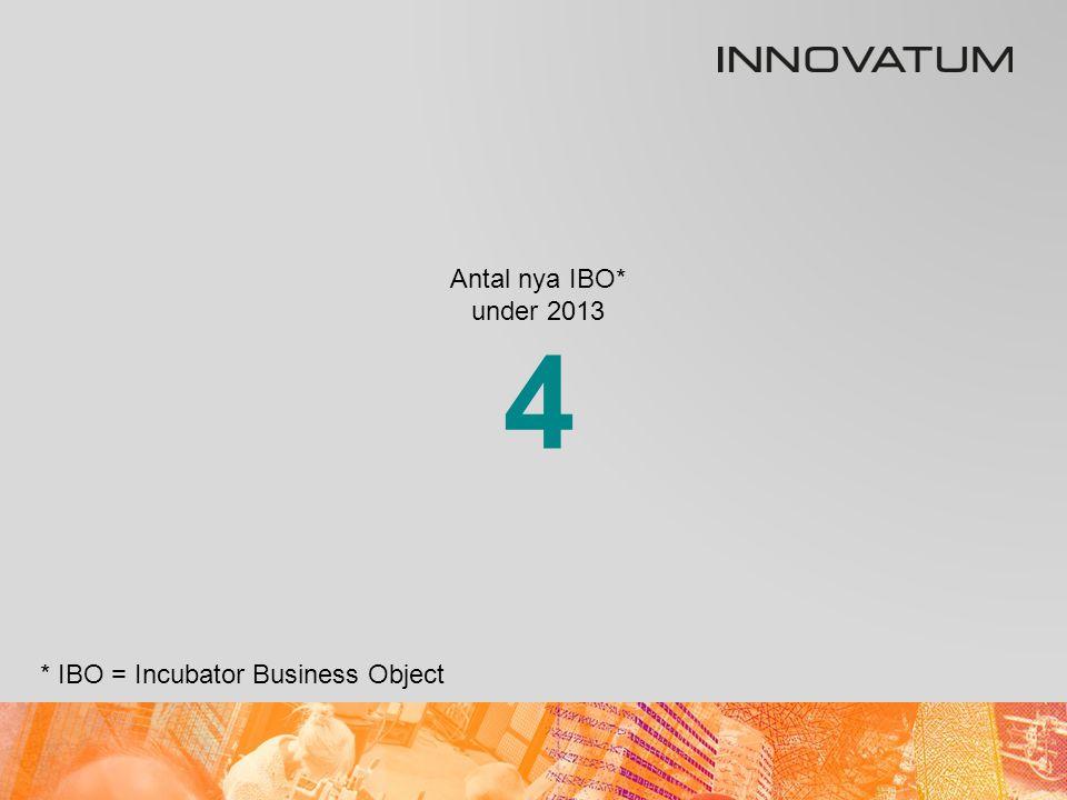 Antal IBO* som lämnade under 2013 * IBO = Incubator Business Object 5
