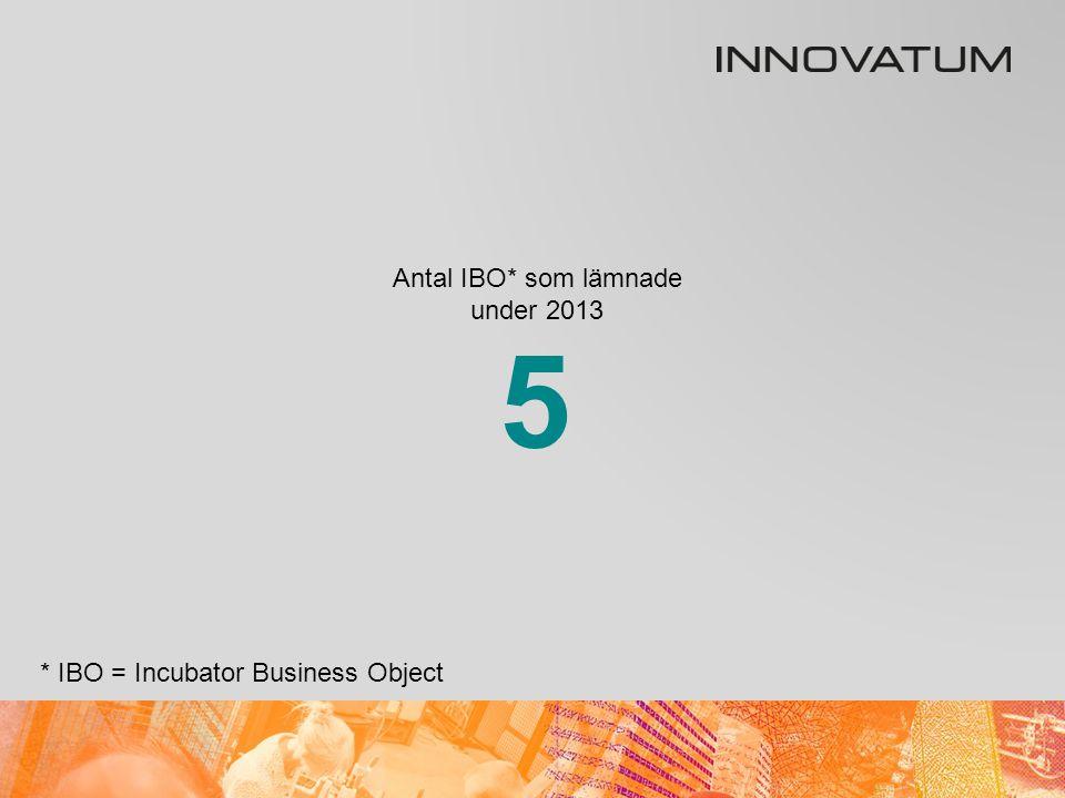 Antal IBO* i inkubatorn 31 december 2013 * IBO = Incubator Business Object 19