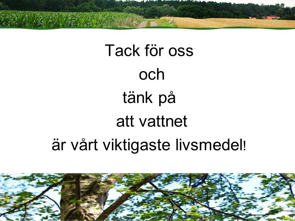 Sid 19 | Lantbrukarnas Riksförbund Tack för oss och tänk på att vattnet är vårt viktigaste livsmedel !