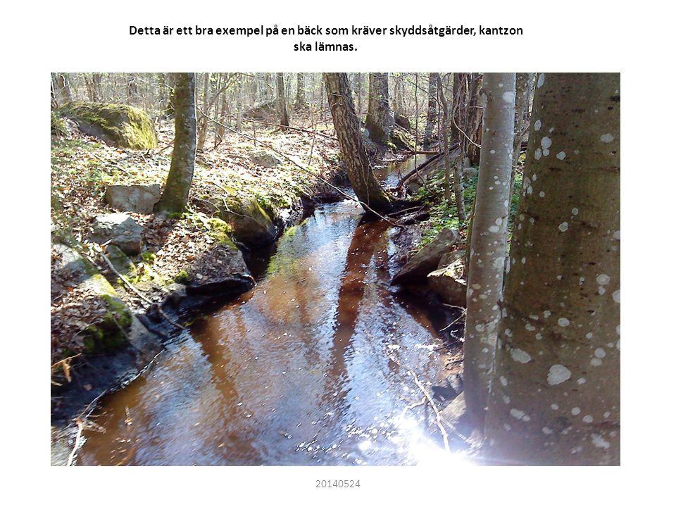 Detta är ett bra exempel på en bäck som kräver skyddsåtgärder, kantzon ska lämnas. 20140524
