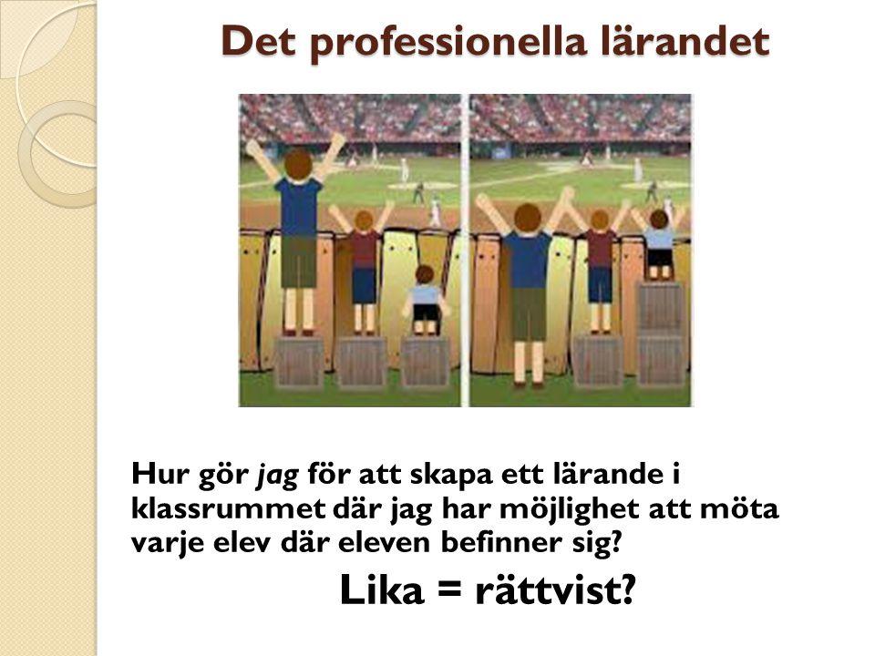 Det professionella lärandet Det professionella lärandet Hur gör jag för att skapa ett lärande i klassrummet där jag har möjlighet att möta varje elev