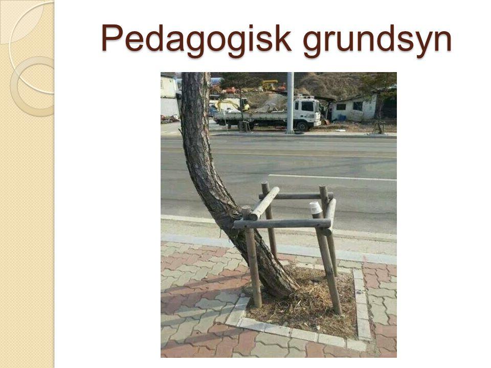 Pedagogisk grundsyn