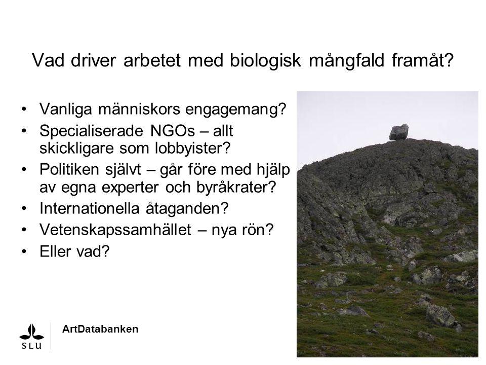Vad driver arbetet med biologisk mångfald framåt? Vanliga människors engagemang? Specialiserade NGOs – allt skickligare som lobbyister? Politiken själ