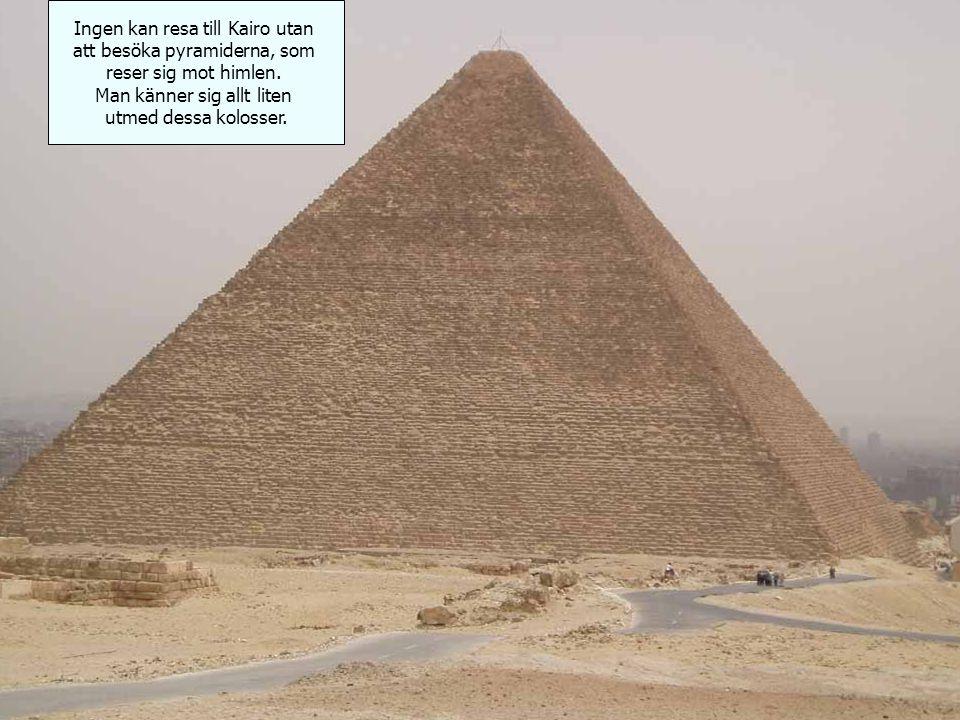 Ingen kan resa till Kairo utan att besöka pyramiderna, som reser sig mot himlen.