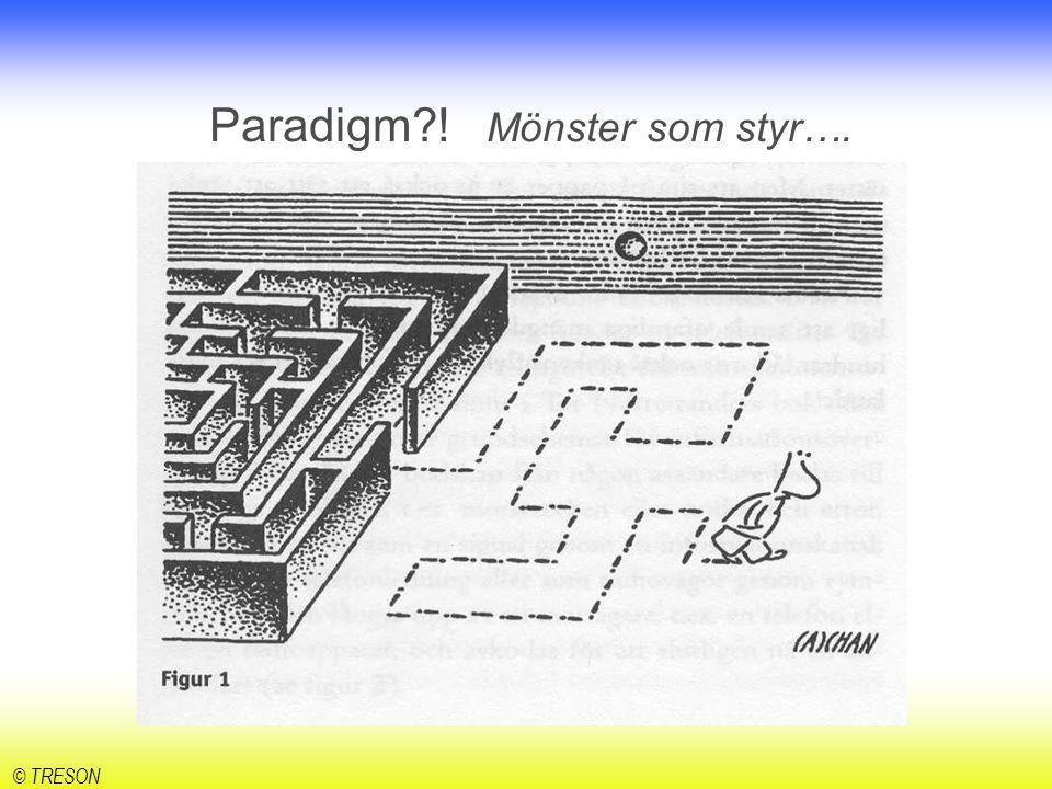 © TRESON Vilka paradigm skulle vi behöva bryta, för att bli än mer framgångsrika?!