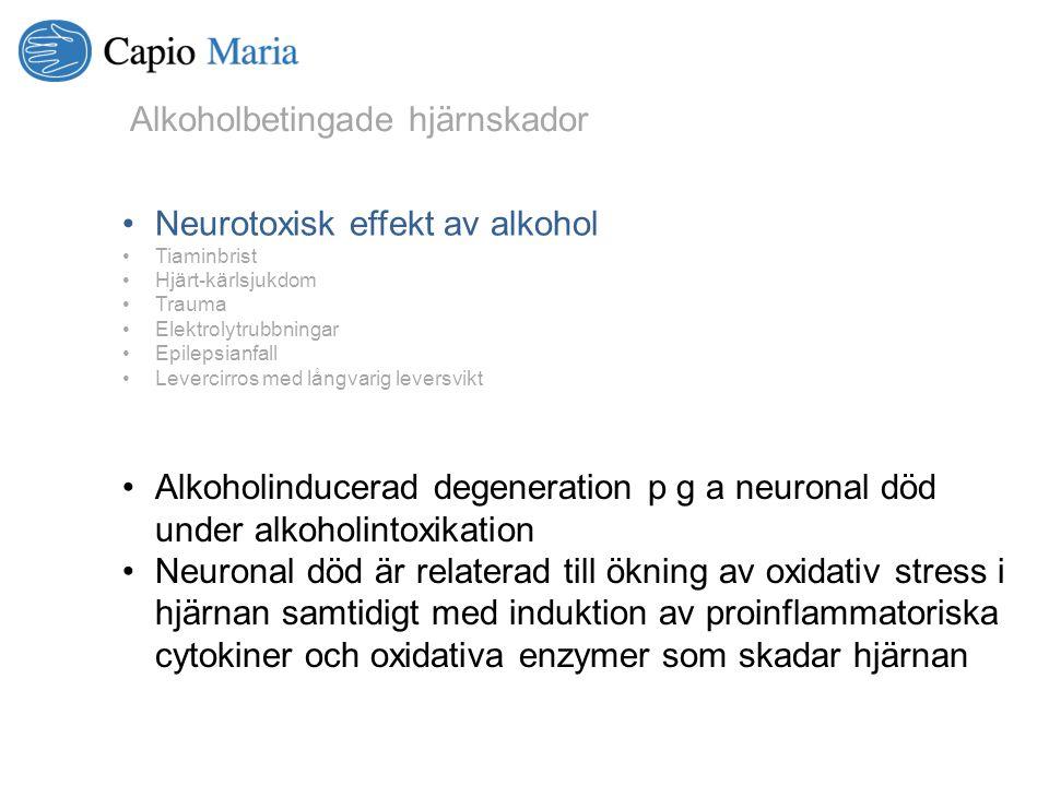 Alkoholinducerad degeneration p g a neuronal död under alkoholintoxikation Neuronal död är relaterad till ökning av oxidativ stress i hjärnan samtidig