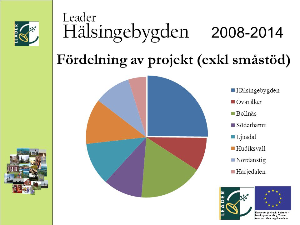 Hälsingebygden 2008-2014 Leader Fördelning av projekt (exkl småstöd)