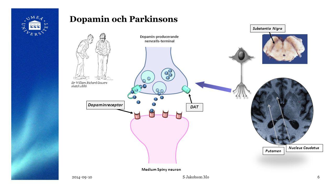 Medium Spiny neuron Dopamin-producerande nervcells-terminal DAT  Dopamin- producerande nervcellers funktion Presynaptisk funktion 123 I-FP-Cit: DaTSCAN™ Dopamin-SPECT 2014-09-10S Jakobson Mo7 Postsynaptisk funktion  Dopamin D2 - receptorernas funktion 123 I-IBZM D2R Dopaminerg synaps i striatum