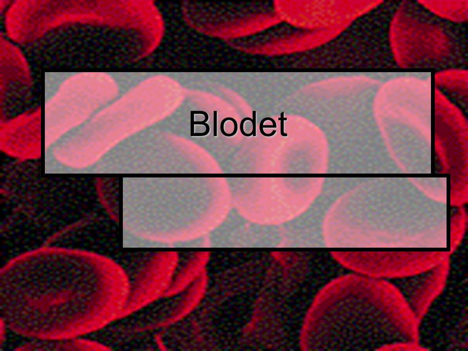 Blodet