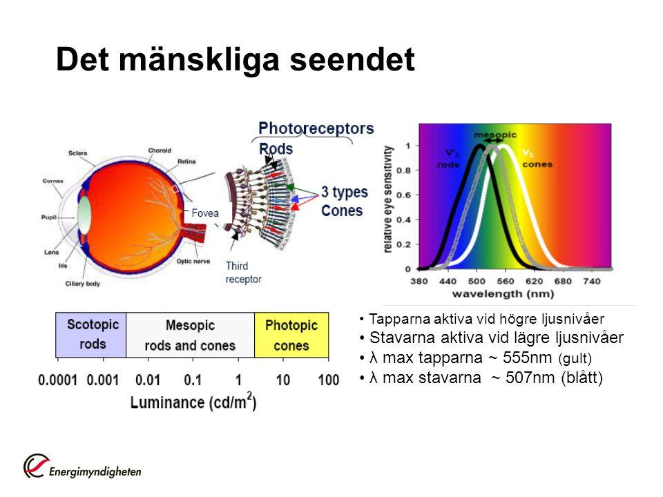 Det mänskliga seendet Tapparna aktiva vid högre ljusnivåer Stavarna aktiva vid lägre ljusnivåer λ max tapparna ~ 555nm (gult) λ max stavarna ~ 507nm (