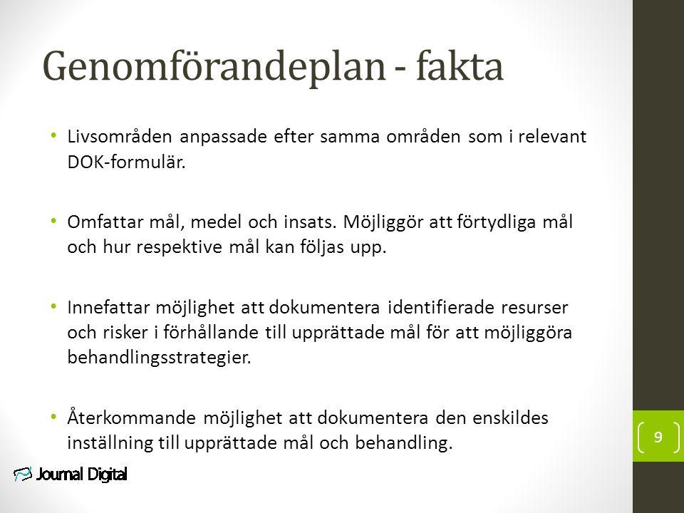 Genomförandeplan - fakta Livsområden anpassade efter samma områden som i relevant DOK-formulär.