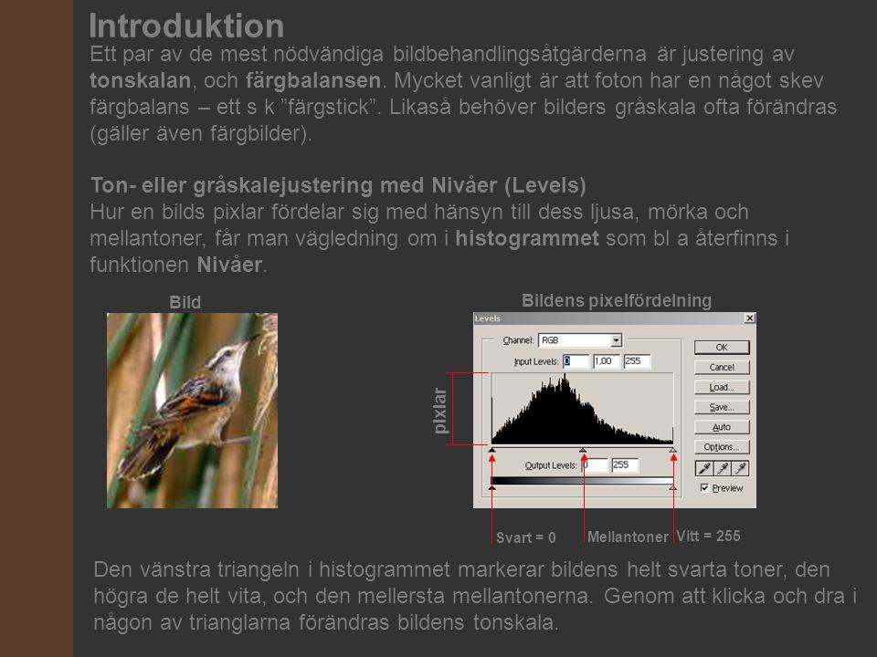 Introduktion Ett par av de mest nödvändiga bildbehandlingsåtgärderna är justering av tonskalan, och färgbalansen. Mycket vanligt är att foton har en n