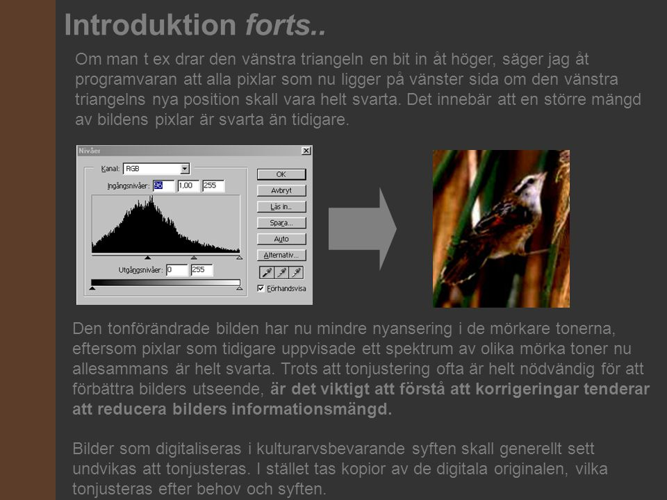 Om man t ex drar den vänstra triangeln en bit in åt höger, säger jag åt programvaran att alla pixlar som nu ligger på vänster sida om den vänstra tria