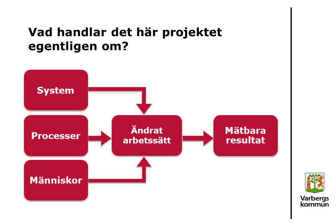 Vad handlar det här projektet egentligen om? System Processer Människor Ändrat arbetssätt Mätbara resultat