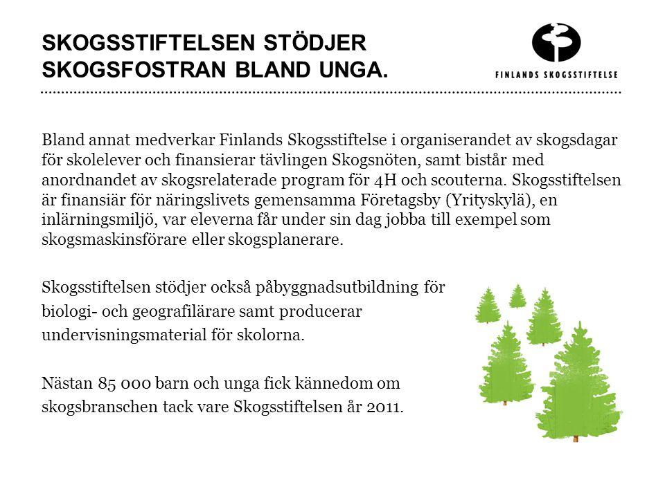 SKOGSSTIFTELSEN STÖDJER SKOGSFOSTRAN BLAND UNGA.