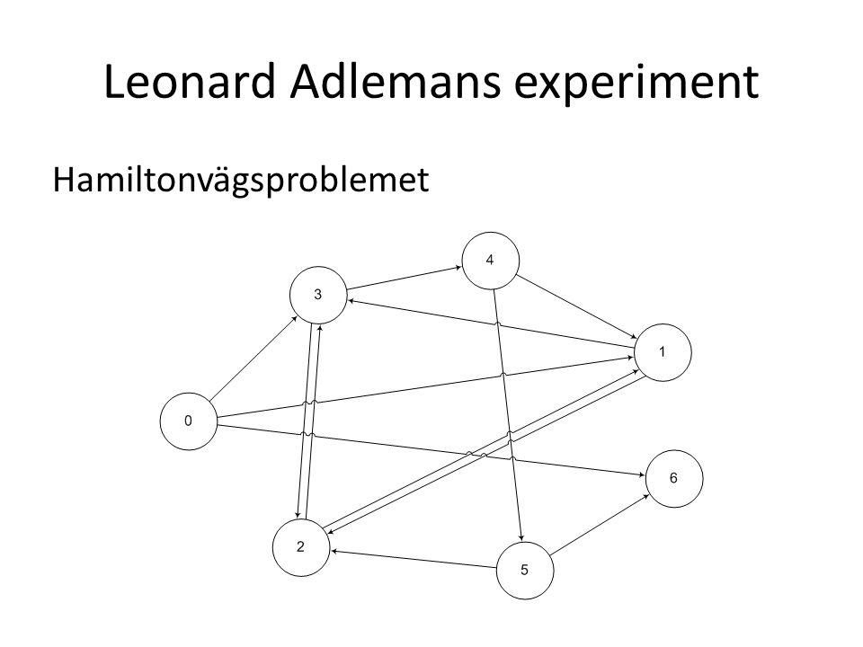 Leonard Adlemans experiment Hamiltonvägsproblemet