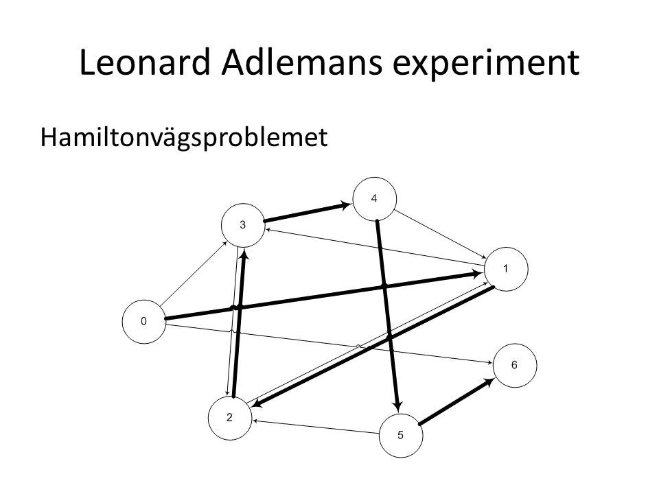 Leonard Adlemans experiment