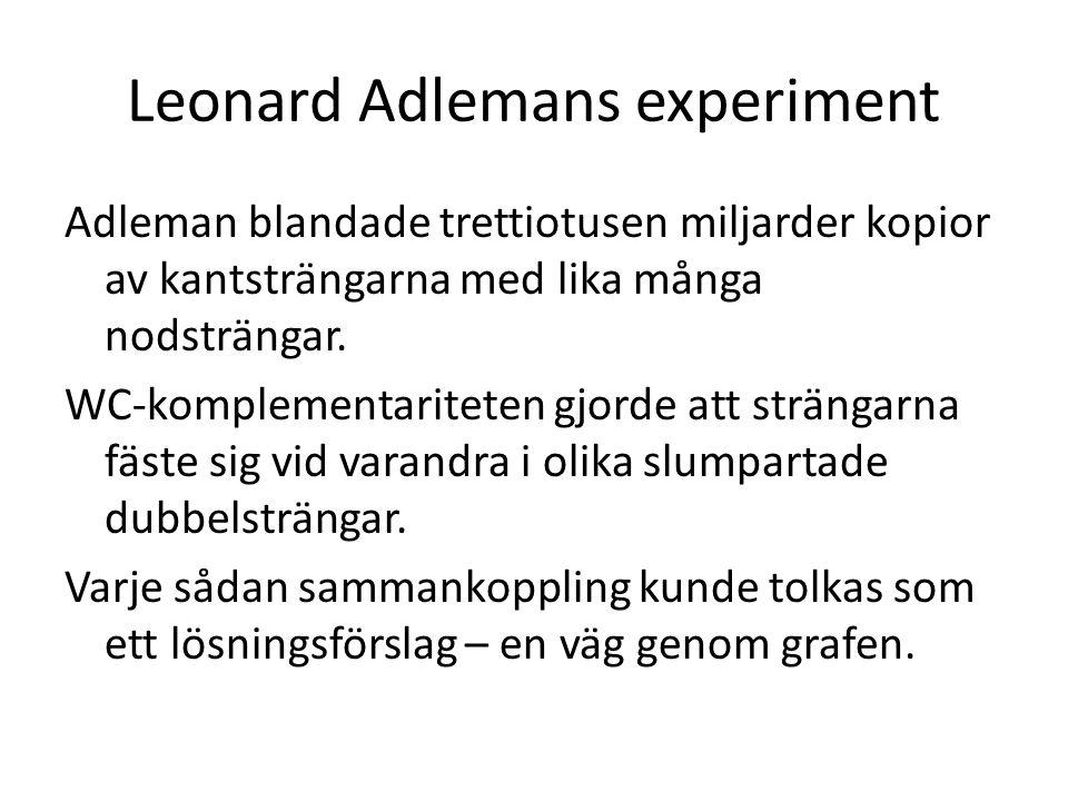 Adleman blandade trettiotusen miljarder kopior av kantsträngarna med lika många nodsträngar.
