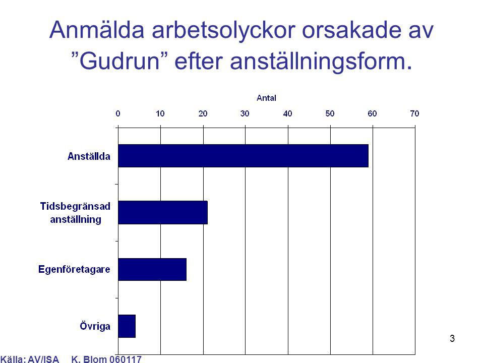"""3 Anmälda arbetsolyckor orsakade av """"Gudrun"""" efter anställningsform. Källa: AV/ISA K. Blom 060117"""