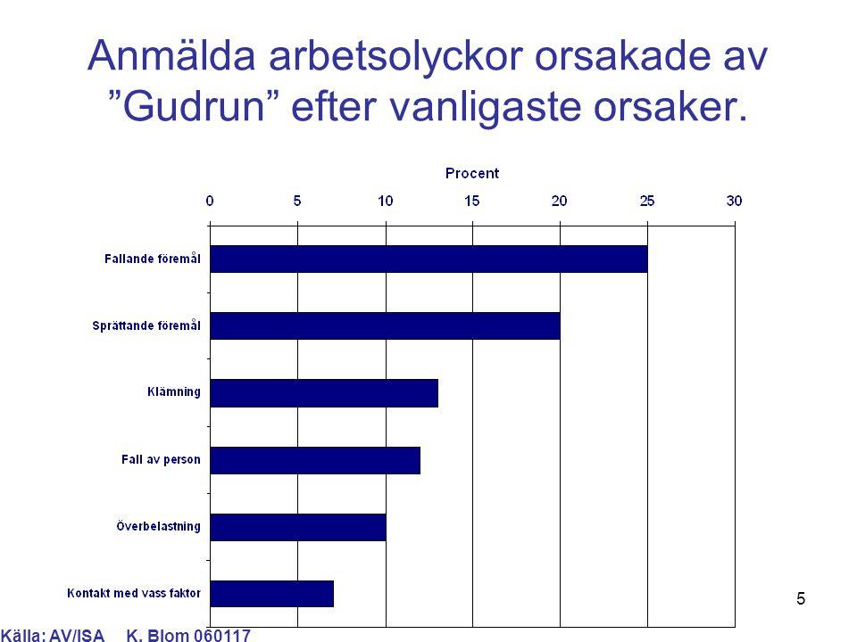 6 Anmälda arbetsolyckor orsakade av Gudrun efter vanligaste skador. Källa: AV/ISA K. Blom 060117